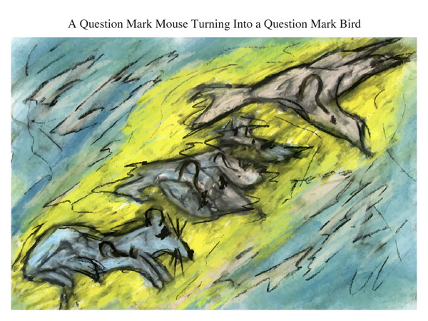 A Question Mark Mouse Turning Into a Question Mark Bird