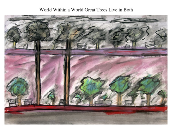 World Within a World Great Trees Live in Both