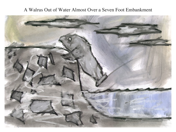 A Walrus Out of Water Almost Over a Seven Foot Embankment