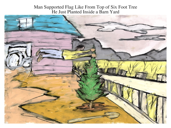 Man Supported Flag Like From Top of Six Foot Tree He Just Planted Inside a Barn Yard