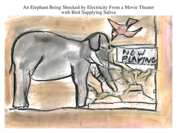 An Elephant Being Shocked by Electricity From a Movie Theater with Bird Supplying Saliva
