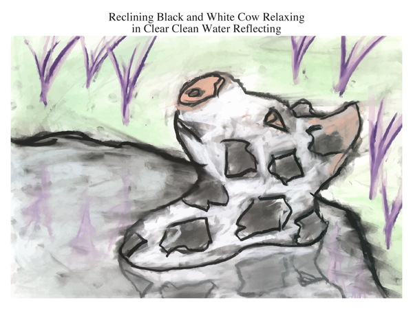 Reclining Black and White Cow Relaxing in Clear Clean Water Reflecting
