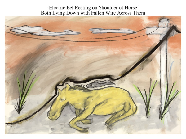 Electric Eel Resting on Shoulder of Horse Both Lying Down with Fallen Wire Across Them