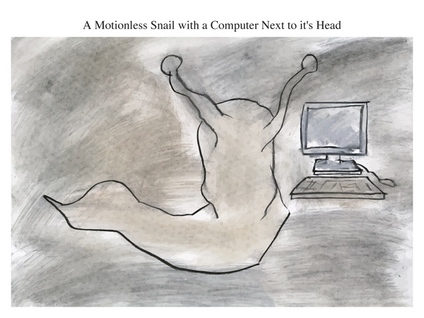 A Motionless Snail with a Computer Next to it's Head