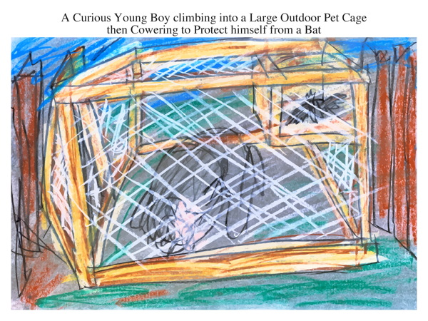 A Curious Young Boy climbing into a Large Outdoor Pet Cage then Cowering to Protect himself from a Bat