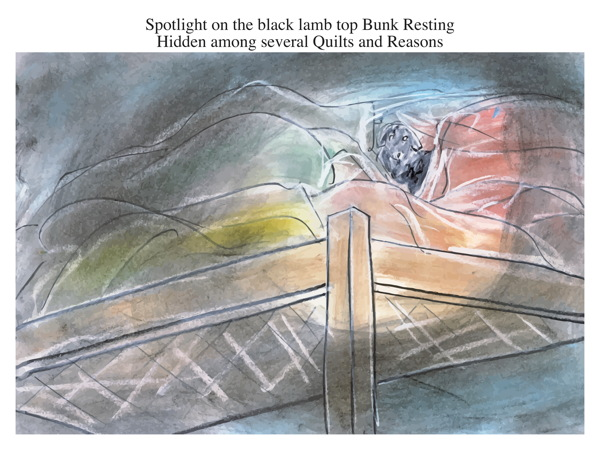 Spotlight on the black lamb top Bunk Resting Hidden among several Quilts and Reasons