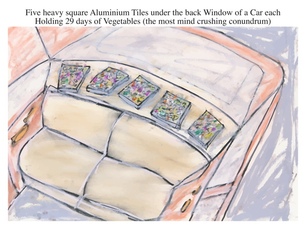 Five heavy square Aluminium Tiles under the back Window of a Car each Holding 29 days of Vegetables (the most mind crushing conundrum)