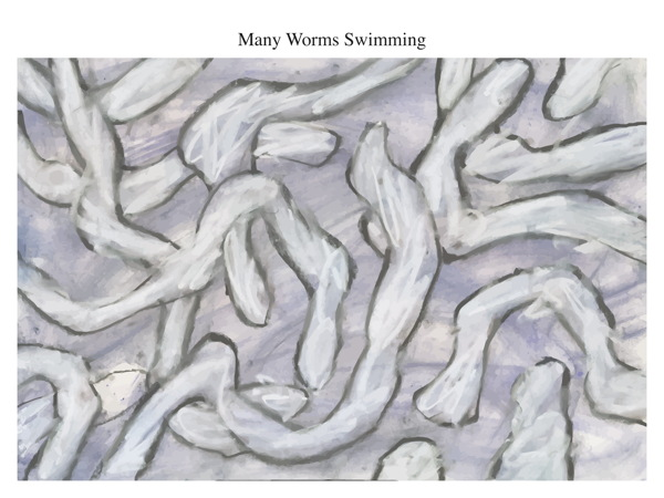 Many Worms Swimming