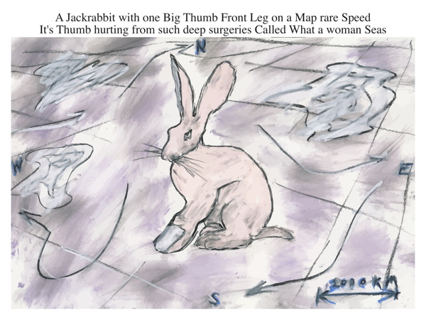 A Jackrabbit with one Big Thumb Front Leg on a Map rare Speed It's Thumb hurting from such deep surgeries Called What a woman Seas