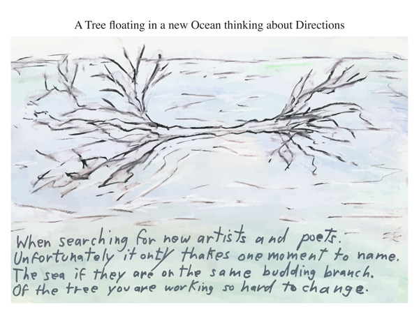 A Tree floating in a new Ocean thinking about Directions