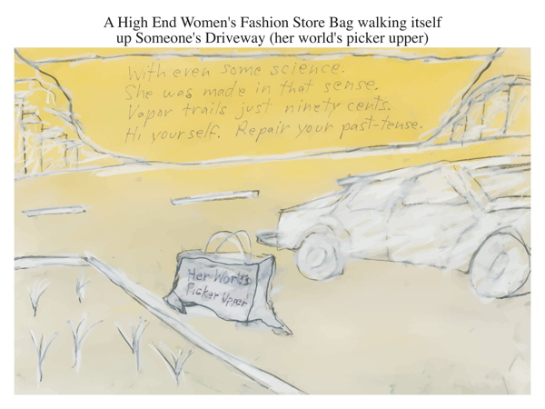 A High End Women's Fashion Store Bag walking itself up Someone's Driveway (her world's picker upper)