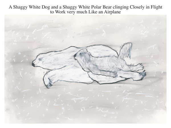 A Shaggy White Dog and a Shaggy White Polar Bear clinging Closely in Flight to Work very much Like an Airplane