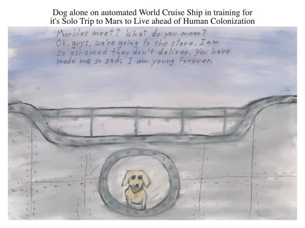 Dog alone on automated World Cruise Ship in training for it's Solo Trip to Mars to Live ahead of Human Colonization