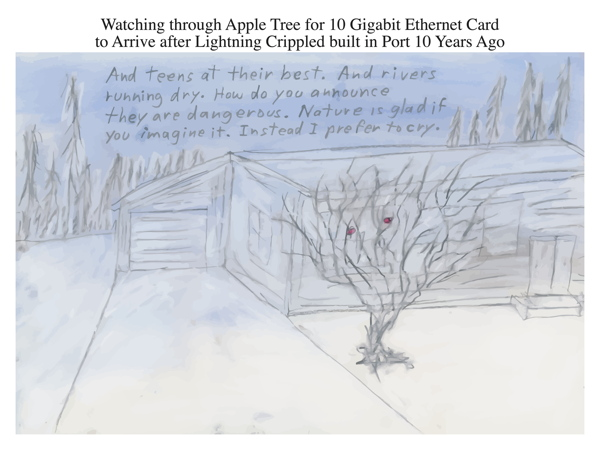 Watching through Apple Tree for 10 Gigabit Ethernet Card to Arrive after Lightning Crippled built in Port 10 Years Ago